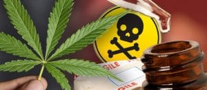 New Zealand Regulation of Cannabis-based Product