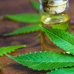 cannabis-health